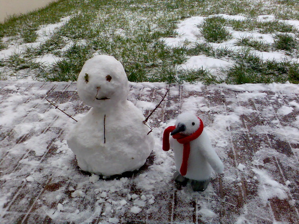 the snowman and his friend