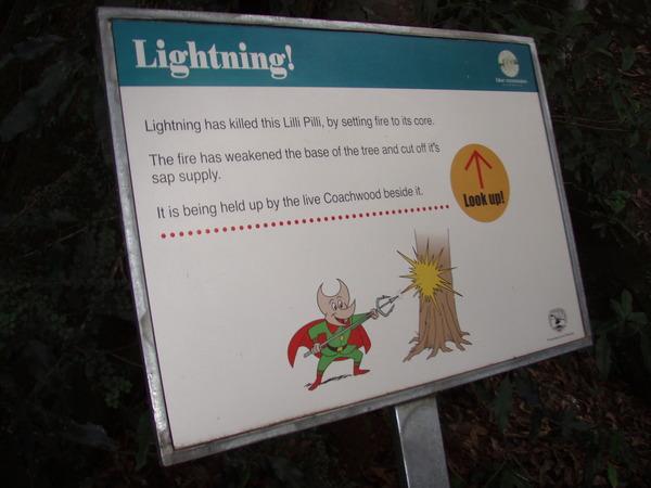 雷劈大樹的告示牌