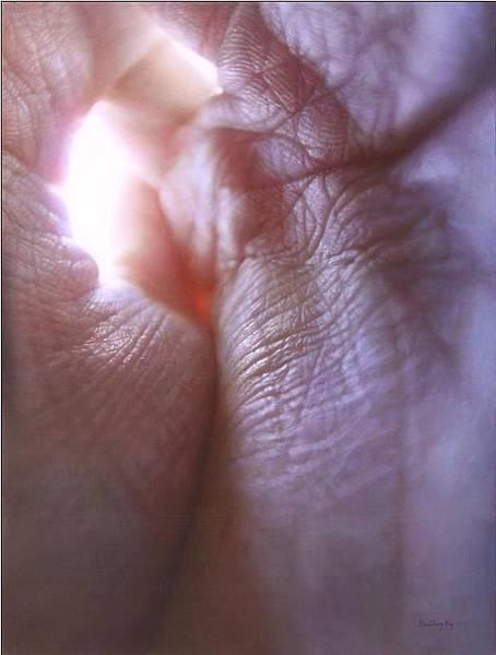眼界五 46x60.5cm 2011 油彩 木板