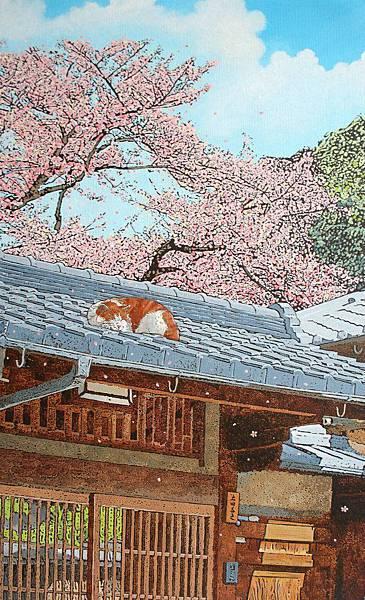 落櫻伴春風 10M 2012