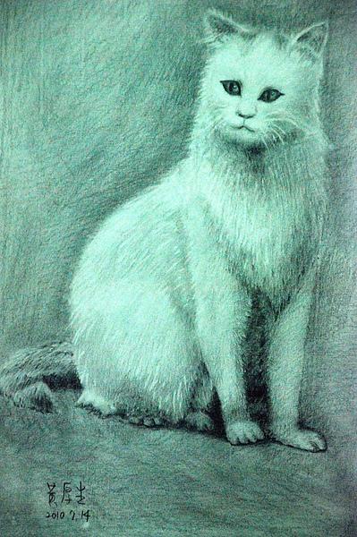 白貓(鉛筆素描).JPG