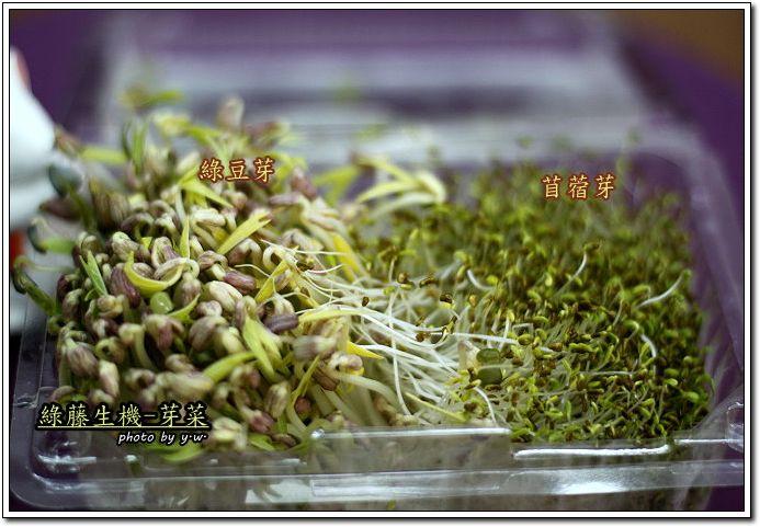 芽菜_苜蓿芽&綠豆芽.jpg