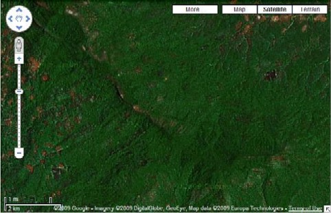20090508_Undetected Forests_Google Earth.jpg