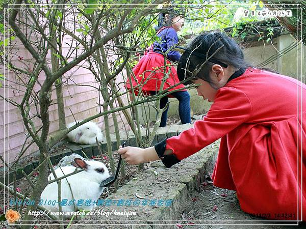 4Y9M-兔子二店IMG_310601.jpg