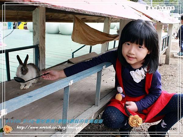 4Y9M-兔子二店IMG_311601.jpg