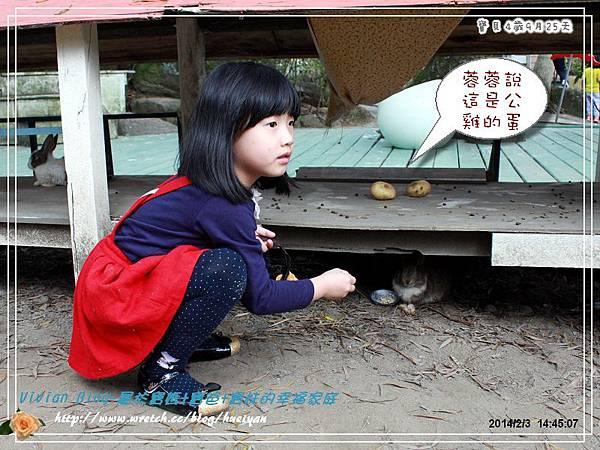4Y9M-兔子二店IMG_312901.jpg