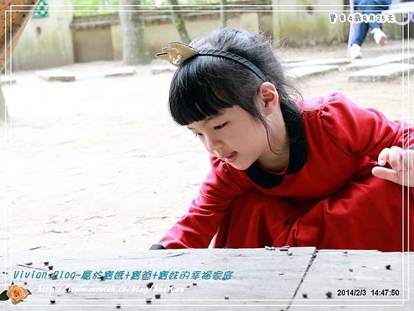 4Y9M-兔子二店IMG_315901.jpg