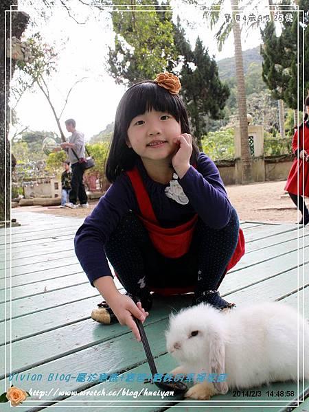 4Y9M-兔子二店IMG_316701.jpg