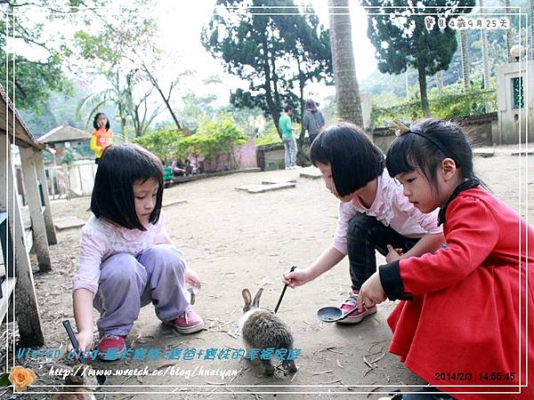 4Y9M-兔子二店IMG_319501.jpg