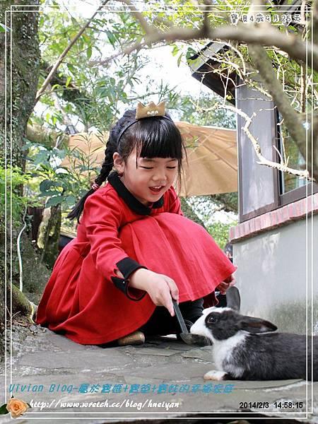 4Y9M-兔子二店IMG_320801.jpg