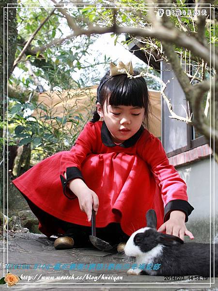 4Y9M-兔子二店IMG_321201.jpg