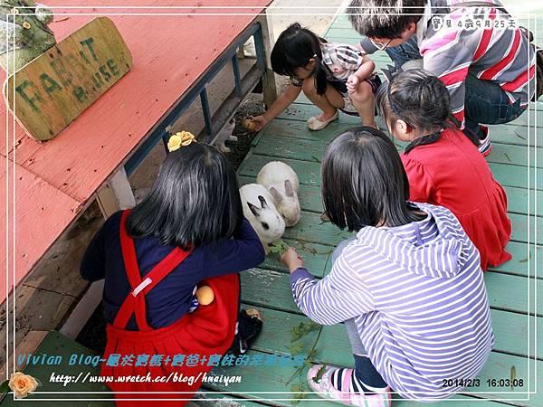 4Y9M-兔子二店IMG_332801.jpg