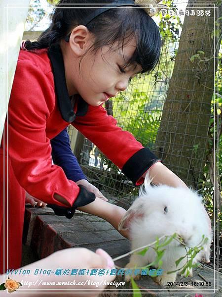 4Y9M-兔子二店IMG_335201.jpg