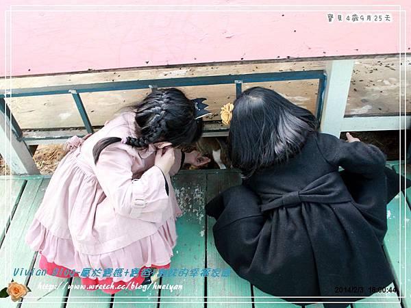4Y9M-兔子二店IMG_368801.jpg