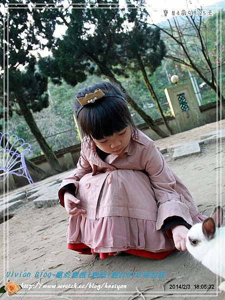 4Y9M-兔子二店IMG_371101.jpg