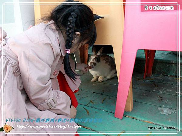 4Y9M-兔子二店IMG_373501.jpg
