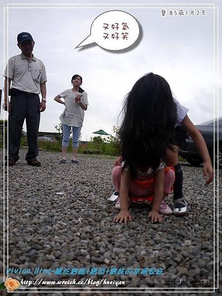 5Y1M-母親節蔥寮場P188072101.jpg
