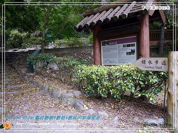 5Y1M-綠水步道&七星潭P190027201.jpg