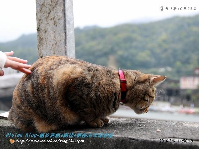 6Y10M-猴硐平溪之旅IMG_023101.jpg