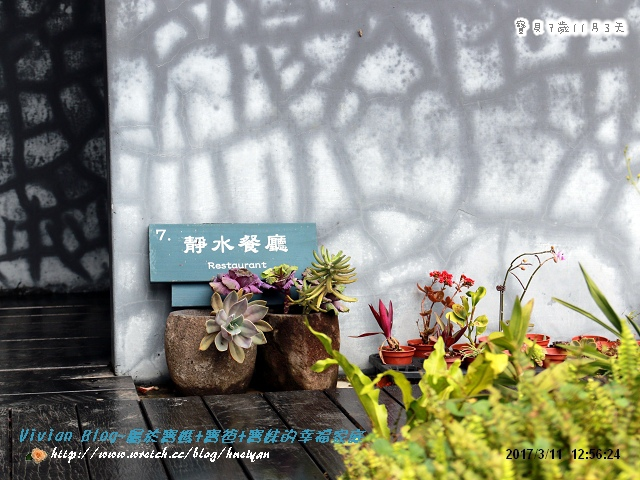7Y11M-大溪老茶廠IMG_360001.jpg