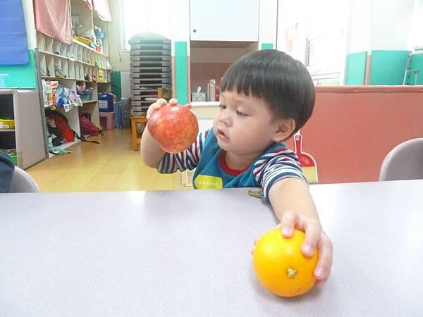 水果摸一摸、聞一聞(2).JPG