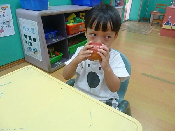 水果摸一摸、聞一聞(11).JPG
