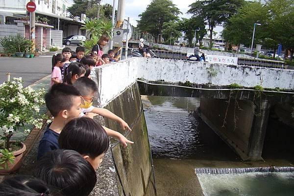 第二次探訪河溝 (13).JPG