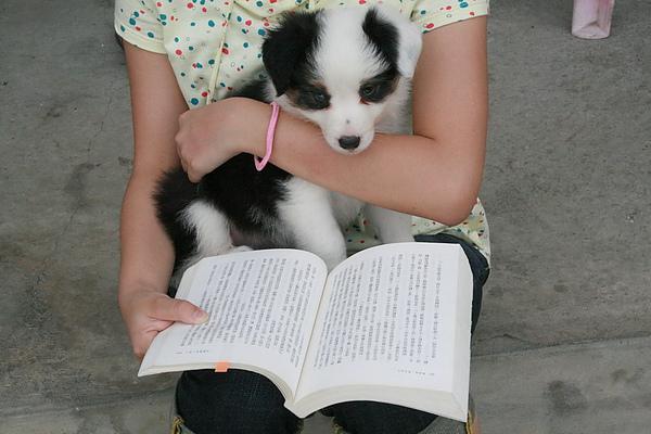 我也會看書喔.jpg