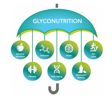醣質營養素雨傘