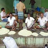 0530印度市場茉莉花苞