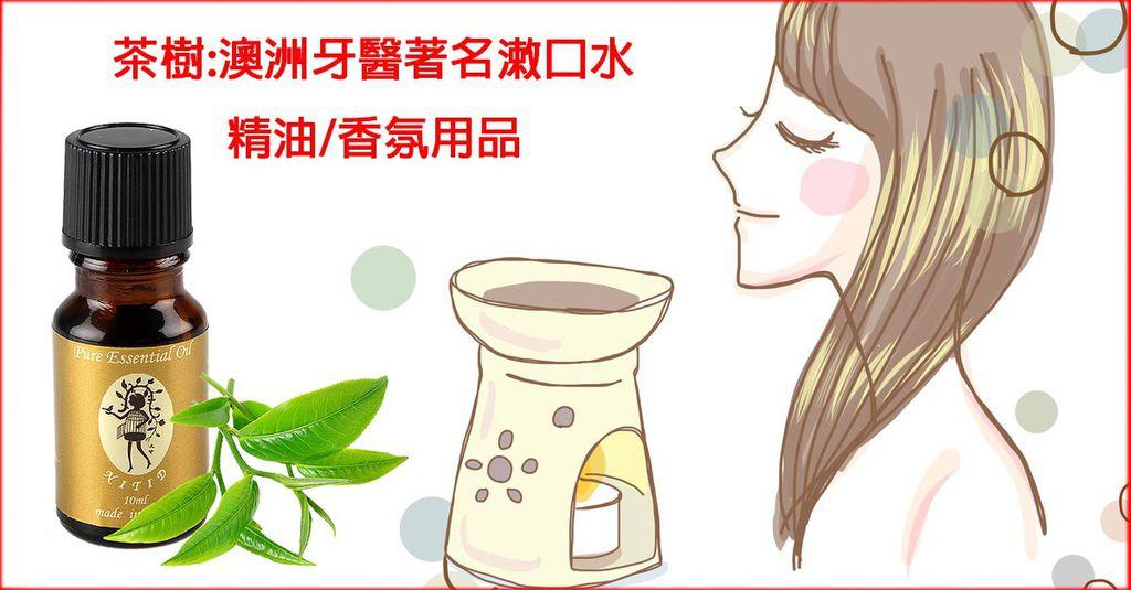 認識茶樹精油