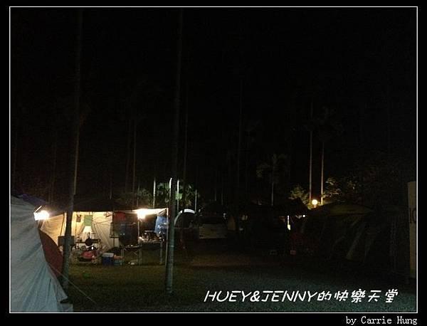 20131005_11 晚安黃金森林01