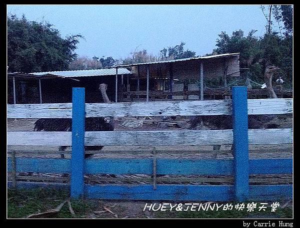20121109_03松旺農場設施11