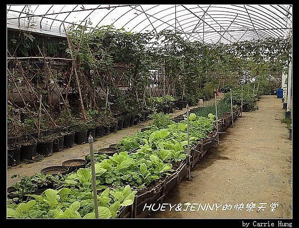 20121109_03松旺農場設施15