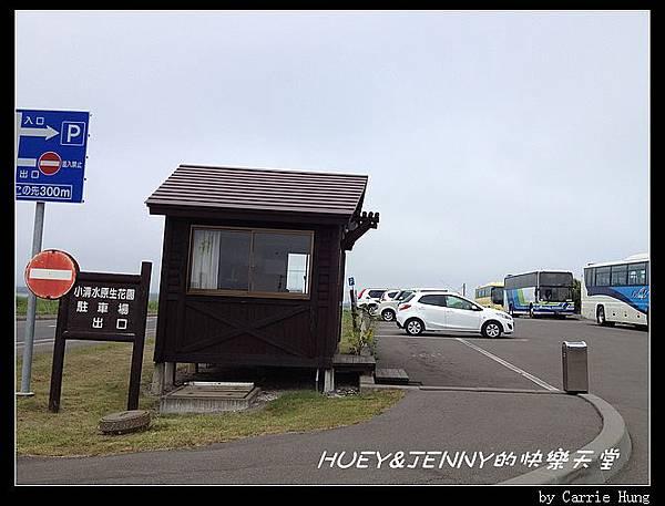 20130721_06小清水原生花園01