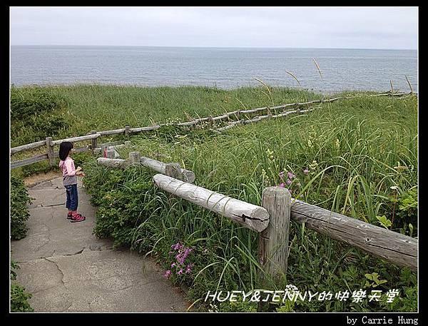20130721_06小清水原生花園15