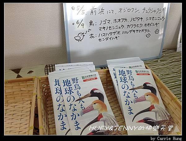 20130721_06小清水原生花園18