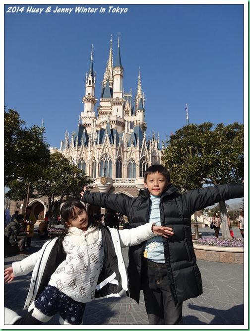 20140121_09 迪士尼城堡 001b