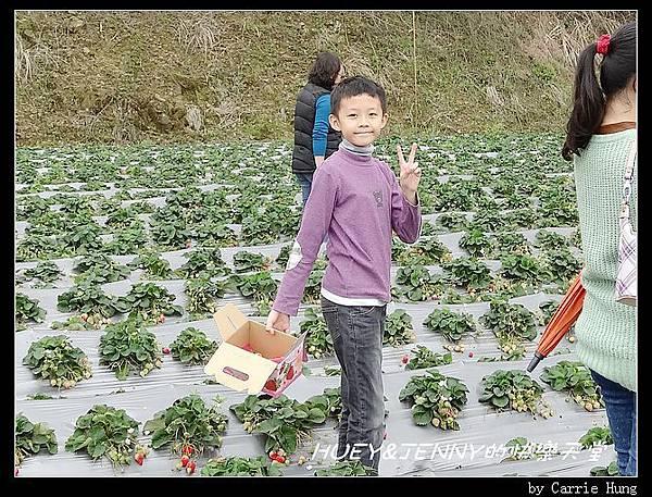 20140322-23-18 採草莓去07