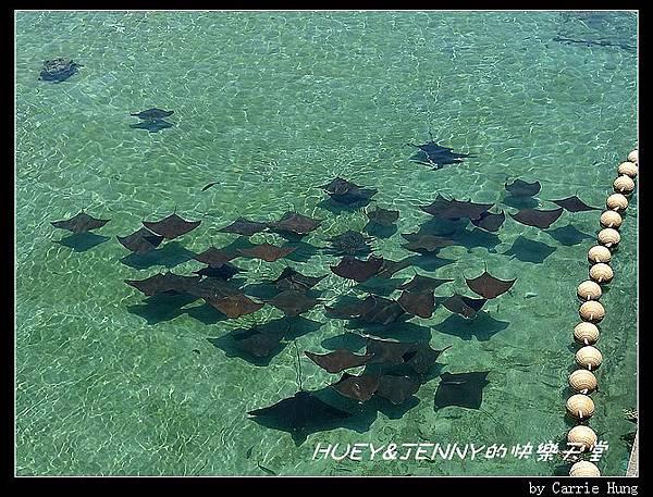 20140601_04 澎湖海洋水族館 74
