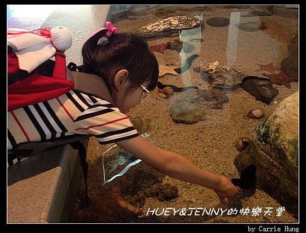 20140601_04 澎湖海洋水族館 93
