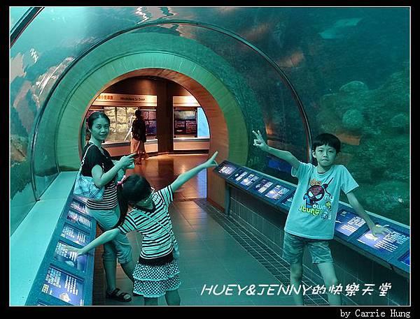20140601_04 澎湖海洋水族館 66