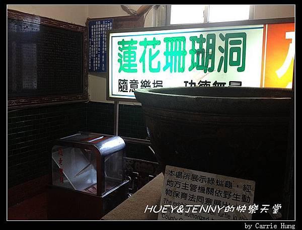 20140601_09 竹灣螃蟹博物館與大義宮海龜 21