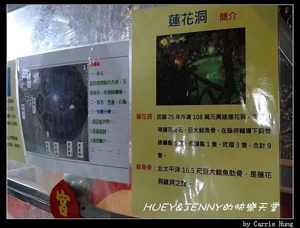 20140601_09 竹灣螃蟹博物館與大義宮海龜 15