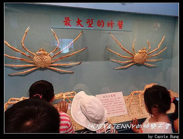 20140601_09 竹灣螃蟹博物館與大義宮海龜 09