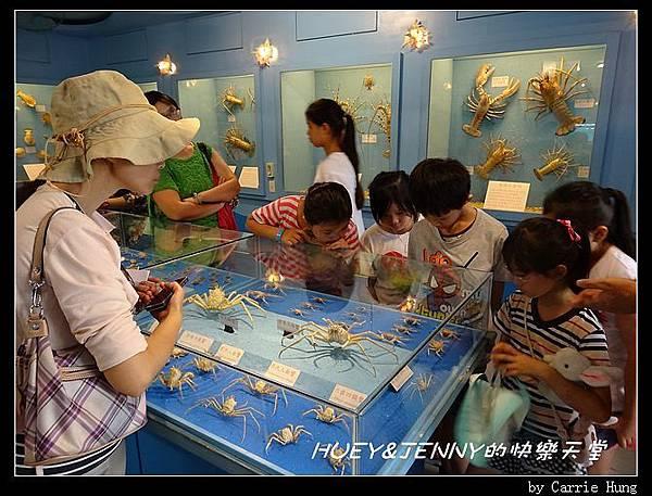 20140601_09 竹灣螃蟹博物館與大義宮海龜 10