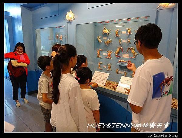 20140601_09 竹灣螃蟹博物館與大義宮海龜 04