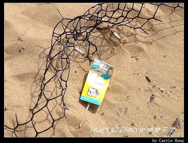 20140602_08 山水沙灘 18