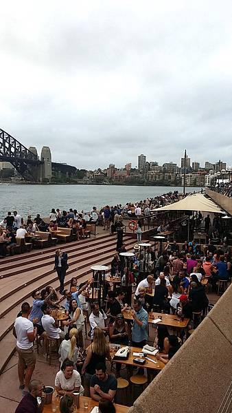 愛喝啤酒的澳洲人