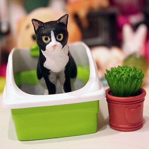 貓咪 001_2.jpg
